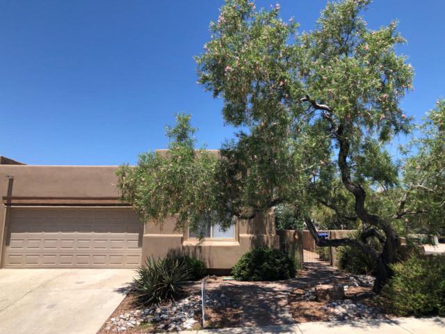 8927 Desert Fox Way NE, Albuquerque, NM 87122 (MLS #949466) :: The Bigelow Team / Red Fox Realty