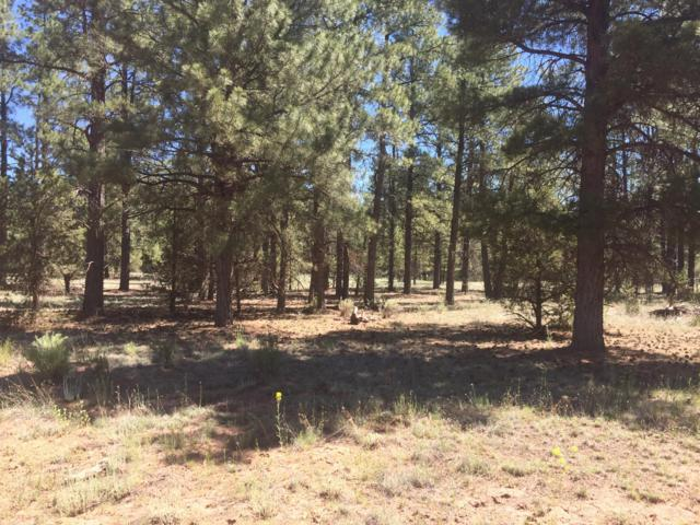 Lot 74 Timber Lake Rd., Ramah, NM 87321 (MLS #949558) :: Silesha & Company