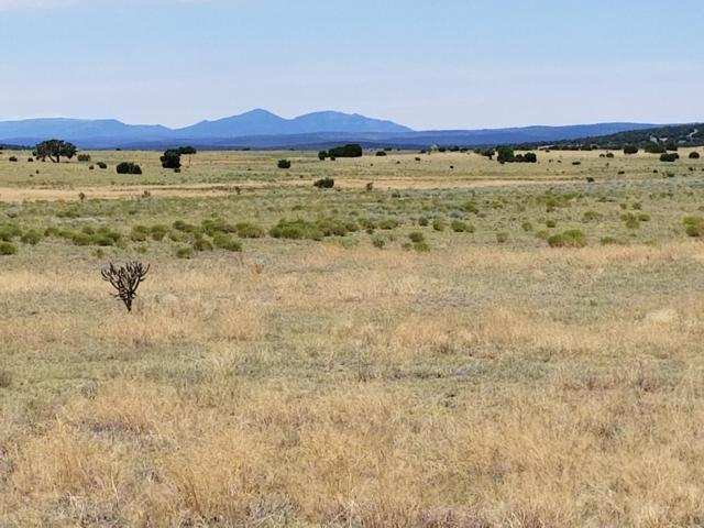 510 Lexco Road, Moriarty, NM 87035 (MLS #949664) :: Silesha & Company