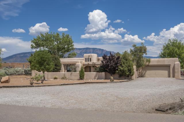 766 Sagebrush Drive, Corrales, NM 87048 (MLS #949709) :: Silesha & Company