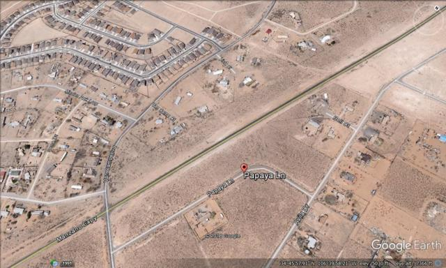 Papaya Lane, Los Lunas, NM 87031 (MLS #949846) :: The Bigelow Team / Red Fox Realty