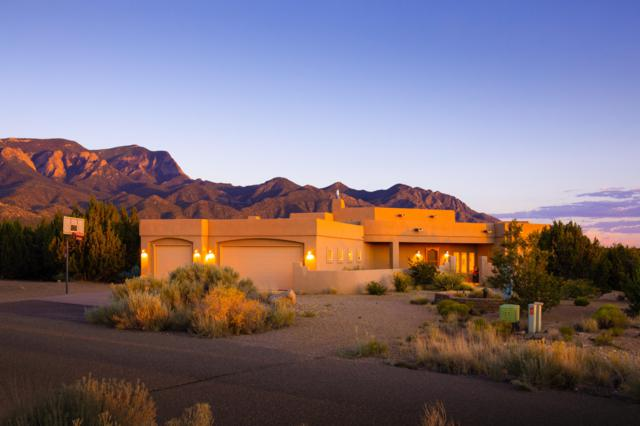 7 Whispering Winds Trail, Placitas, NM 87043 (MLS #949855) :: Campbell & Campbell Real Estate Services