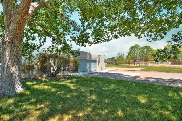 528 Alamos Road, Corrales, NM 87048 (MLS #949953) :: Silesha & Company