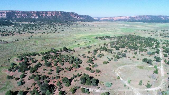 594 Timberlake Road, Ramah, NM 87321 (MLS #949958) :: Campbell & Campbell Real Estate Services