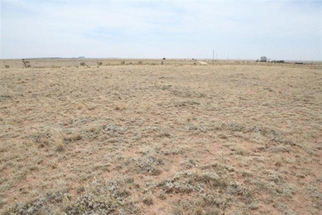Lots D-7 & D-8 Indiana Court, Moriarty, NM 87035 (MLS #950049) :: Campbell & Campbell Real Estate Services