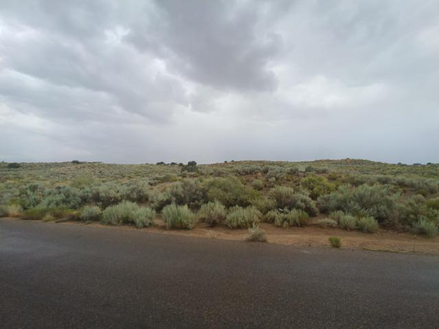 1225 8th Street NE, Rio Rancho, NM 87144 (MLS #950075) :: Silesha & Company