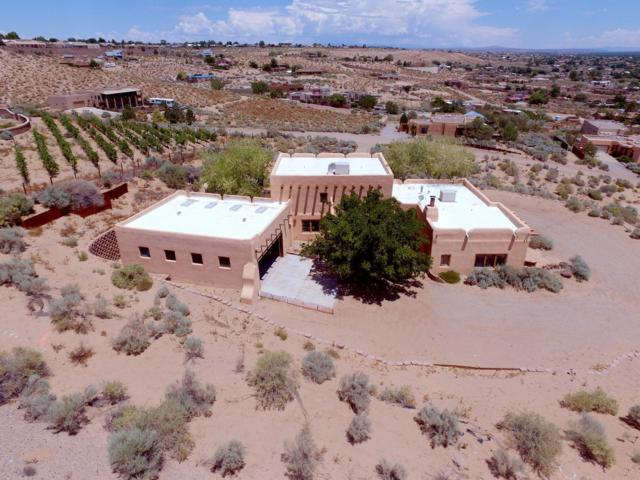 300 Chimaja Road, Corrales, NM 87048 (MLS #950112) :: Campbell & Campbell Real Estate Services