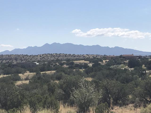 102 Montezuma Court, Placitas, NM 87043 (MLS #950206) :: Campbell & Campbell Real Estate Services