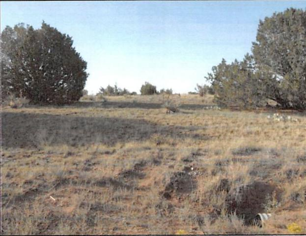 0 Angelina Court, Moriarty, NM 87035 (MLS #950216) :: The Bigelow Team / Red Fox Realty