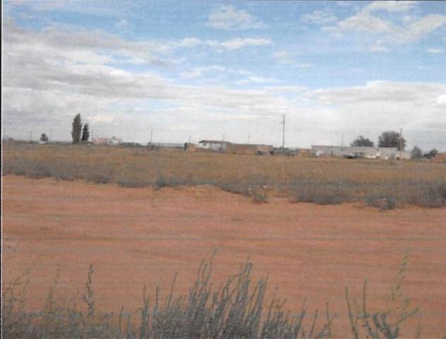 70 Tammy Lane, Moriarty, NM 87035 (MLS #950218) :: The Bigelow Team / Red Fox Realty