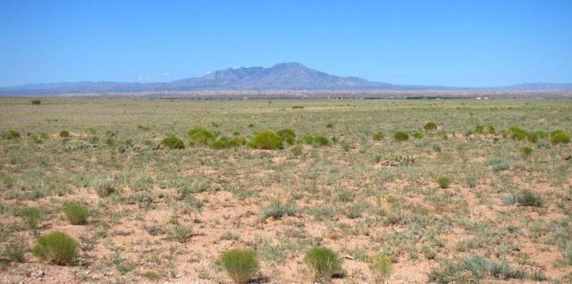 Vl Tierra Grande, Socorro, NM 87801 (MLS #950239) :: Campbell & Campbell Real Estate Services