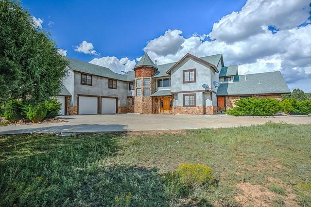 163 Camino Salado, La Jara, NM 87027 (MLS #950263) :: The Bigelow Team / Red Fox Realty