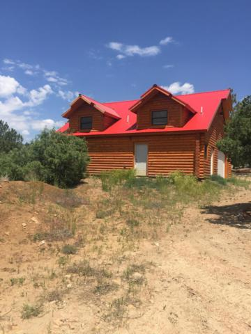 437 Shroyer Drive, Los Ojos, NM 87575 (MLS #950446) :: Campbell & Campbell Real Estate Services