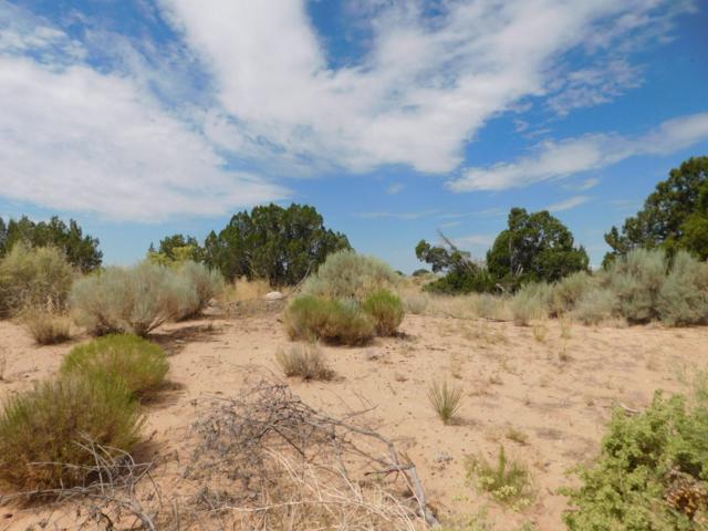 6228 Enchanted Hills Boulevard NE, Rio Rancho, NM 87144 (MLS #950476) :: The Bigelow Team / Red Fox Realty