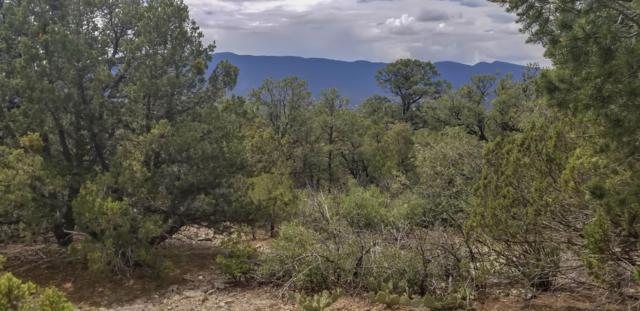 44 Crestview Drive, Tijeras, NM 87059 (MLS #950539) :: The Bigelow Team / Red Fox Realty