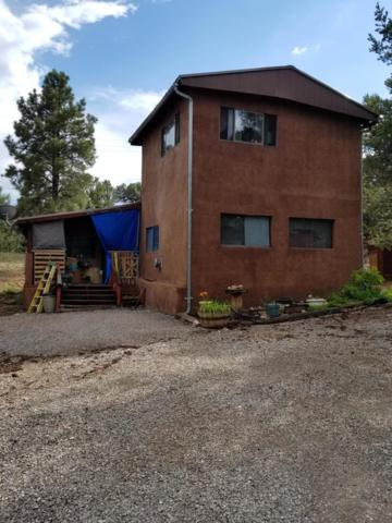 41 Kokanee Road, Thoreau, NM 87323 (MLS #950598) :: Campbell & Campbell Real Estate Services