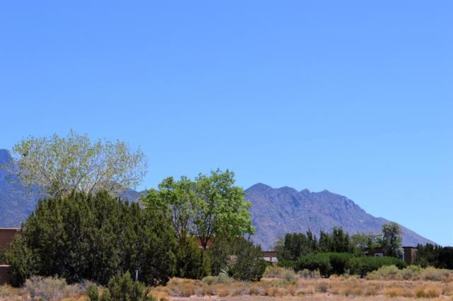Lot 128 Ocate Court, Placitas, NM 87043 (MLS #950729) :: Campbell & Campbell Real Estate Services