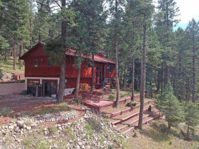 720 Los Griegos Road, Jemez Springs, NM 87025 (MLS #950746) :: Silesha & Company