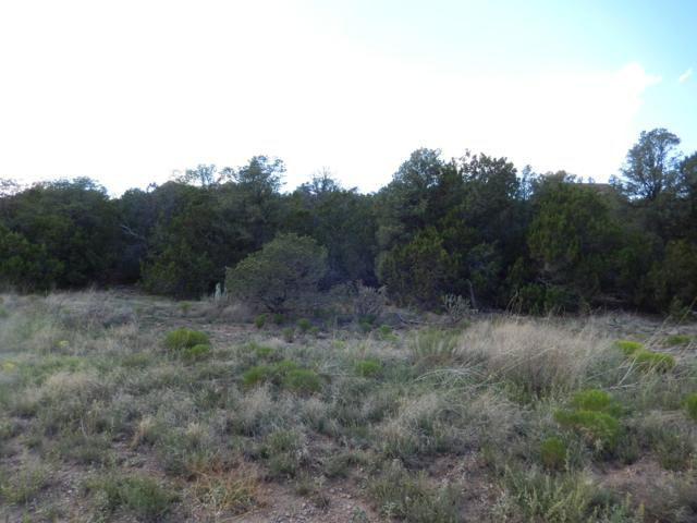 21 Camino Estribor, Edgewood, NM 87015 (MLS #950766) :: Campbell & Campbell Real Estate Services