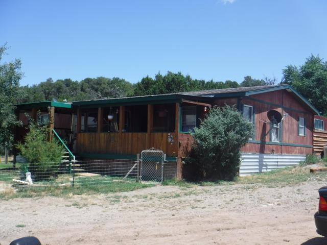 182 County Road A102, Edgewood, NM 87015 (MLS #950832) :: Campbell & Campbell Real Estate Services