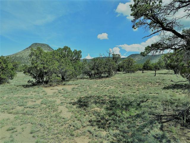 50 Deer Trail Trail, Datil, NM 87821 (MLS #951197) :: The Buchman Group