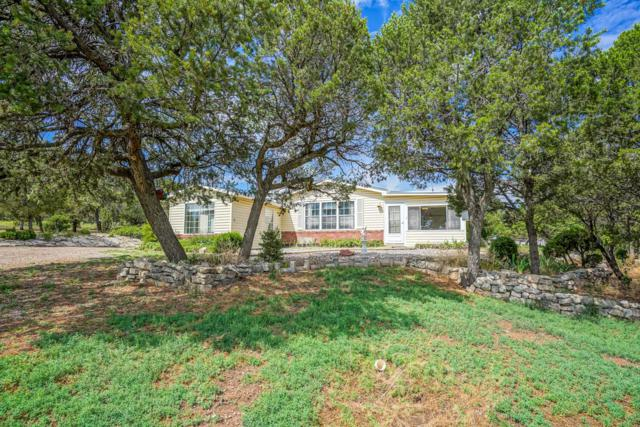 3980 Martinez Road, Edgewood, NM 87015 (MLS #951249) :: Campbell & Campbell Real Estate Services