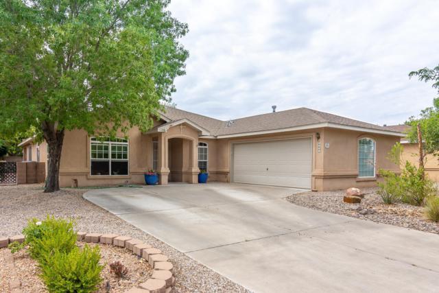 6916 Luz De La Luna Place NW, Albuquerque, NM 87114 (MLS #951260) :: The Bigelow Team / Red Fox Realty