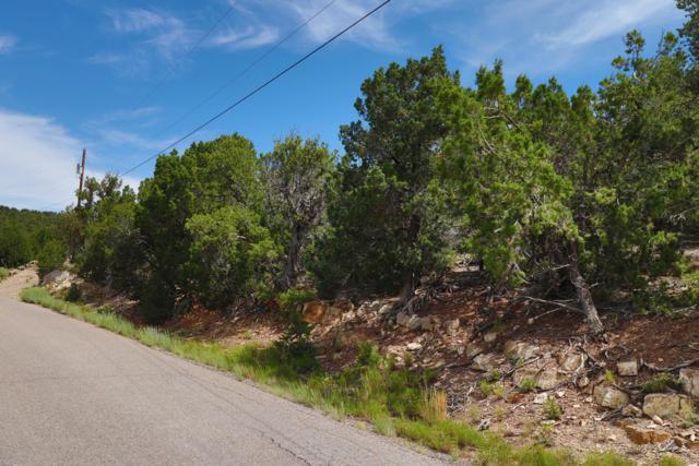 51 Vista Bonita Drive, Sandia Park, NM 87047 (MLS #951337) :: Campbell & Campbell Real Estate Services