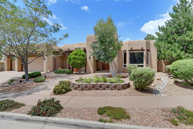 5401 High Canyon Trail NE, Albuquerque, NM 87111 (MLS #951398) :: The Bigelow Team / Red Fox Realty