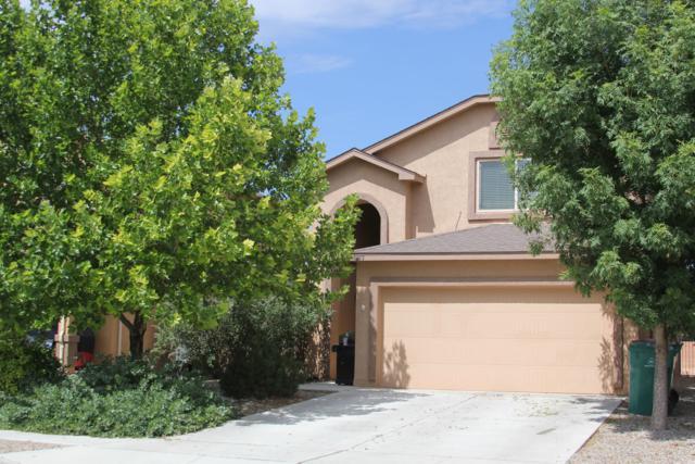 1243 Desert Paintbrush Loop NE, Rio Rancho, NM 87144 (MLS #951434) :: The Bigelow Team / Red Fox Realty