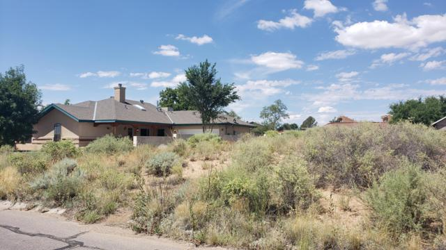 103 Utah Meadow Road NE, Rio Rancho, NM 87124 (MLS #951453) :: Campbell & Campbell Real Estate Services