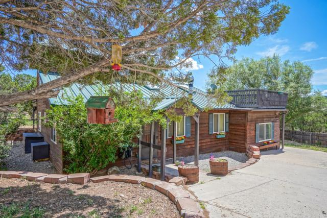 20 Fir Loop, Cedar Crest, NM 87008 (MLS #951461) :: Campbell & Campbell Real Estate Services