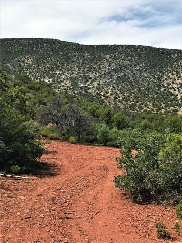 104 Diamond Tail Road, Placitas, NM 87043 (MLS #951502) :: Campbell & Campbell Real Estate Services