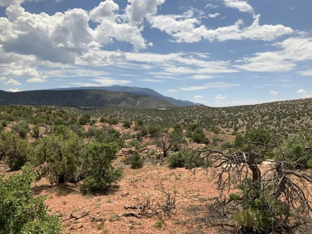 281 Star Meadow Court, Placitas, NM 87043 (MLS #951503) :: Campbell & Campbell Real Estate Services