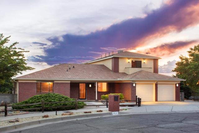 2513 Punta De Vista Drive NE, Albuquerque, NM 87112 (MLS #951526) :: The Bigelow Team / Red Fox Realty
