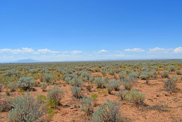 Lot 16 Rio Grande Estates, Rio Communities, NM 87002 (MLS #951608) :: Campbell & Campbell Real Estate Services