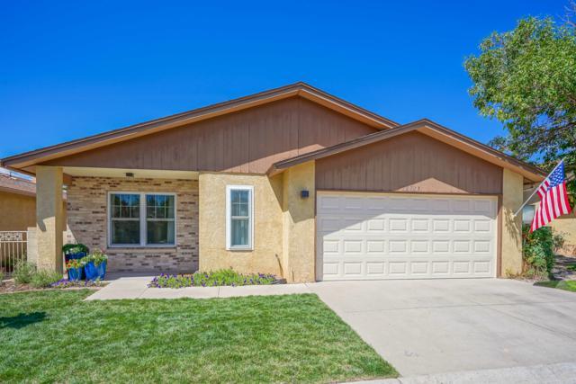 10713 Lagrange Park Drive NE, Albuquerque, NM 87123 (MLS #951625) :: The Bigelow Team / Red Fox Realty