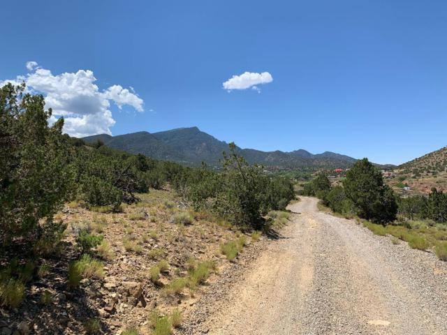 4 Charlotte Lane, Placitas, NM 87043 (MLS #951659) :: The Bigelow Team / Red Fox Realty