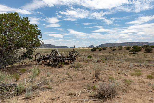 Orona Road, Quemado, NM 87829 (MLS #951704) :: Campbell & Campbell Real Estate Services