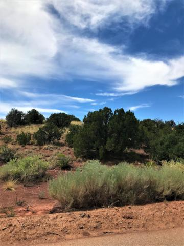 100 Wild Primrose Lot 115, Placitas, NM 87043 (MLS #951740) :: Campbell & Campbell Real Estate Services