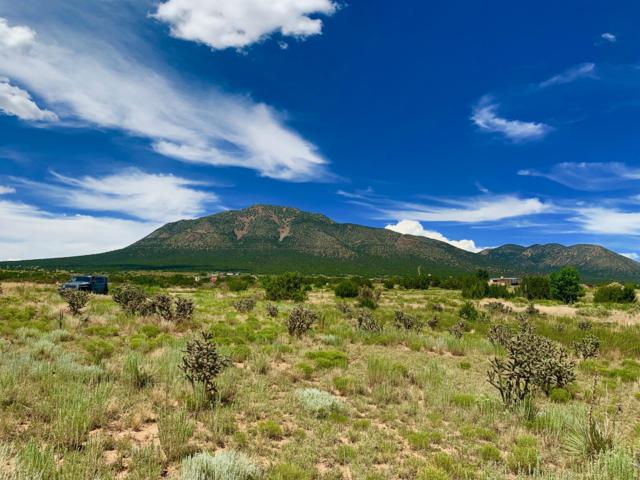 Horton And Entranosa, Edgewood, NM 87015 (MLS #951744) :: Campbell & Campbell Real Estate Services