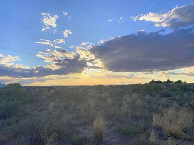 Lot 14 Highway 47, Los Lunas, NM 87031 (MLS #953582) :: Campbell & Campbell Real Estate Services