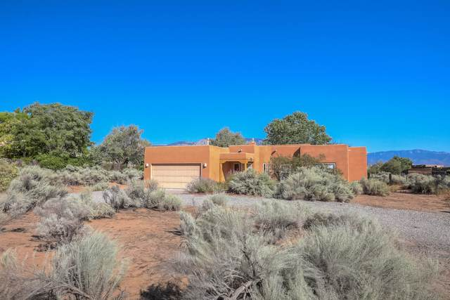 68 Lena Court, Corrales, NM 87048 (MLS #953789) :: Campbell & Campbell Real Estate Services