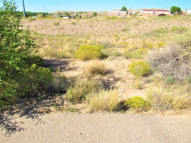 9 Loma Cordorniz, Peralta, NM 87042 (MLS #953883) :: Sandi Pressley Team