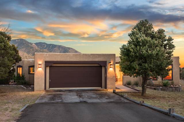 1209 Marigold Drive NE, Albuquerque, NM 87122 (MLS #953929) :: Silesha & Company
