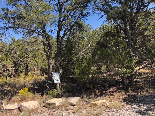10 Coyote Canyon Trail, Tijeras, NM 87059 (MLS #953940) :: Campbell & Campbell Real Estate Services