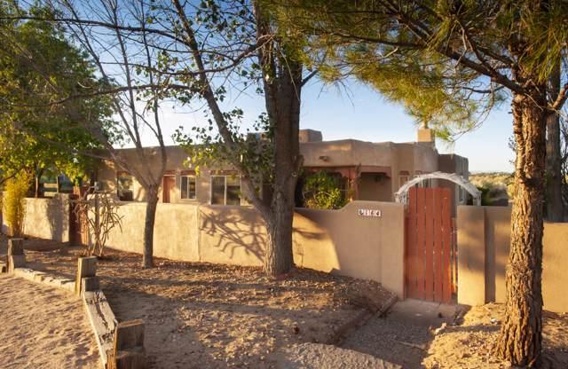 164 Anya Road, Corrales, NM 87048 (MLS #953963) :: Silesha & Company