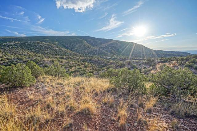 107 Buffalo Ridge Court, Placitas, NM 87043 (MLS #954095) :: Campbell & Campbell Real Estate Services