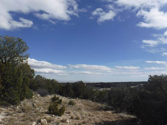 0 Morper Road, Edgewood, NM 87015 (MLS #954221) :: Campbell & Campbell Real Estate Services