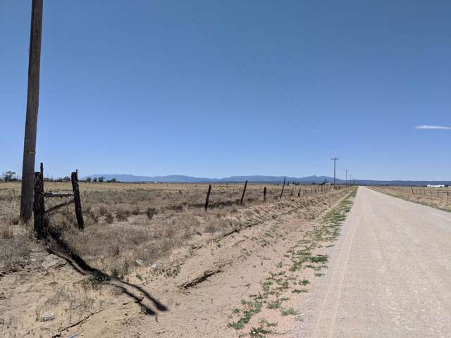 45 Acre Antelope Springs Lot 104 - 112, Estancia, NM 87016 (MLS #954232) :: Campbell & Campbell Real Estate Services